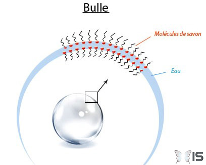 bulles-rondes